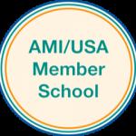 AMI/USA seal